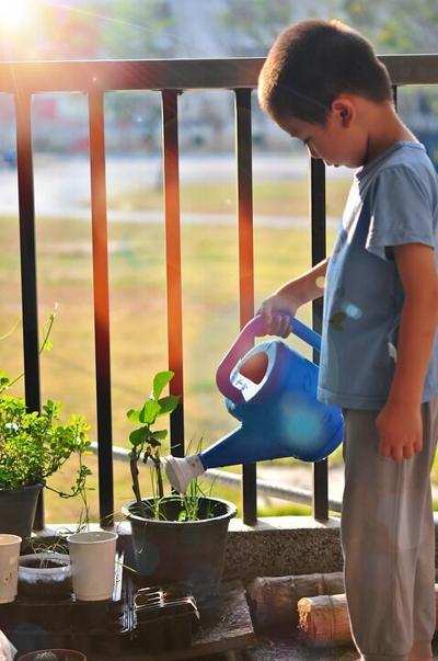 Dakota Gardener - Kids Gardening