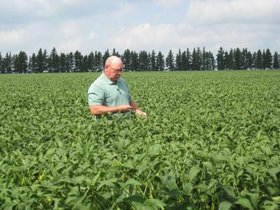 NDSU Fertilizer Prices So Sky High