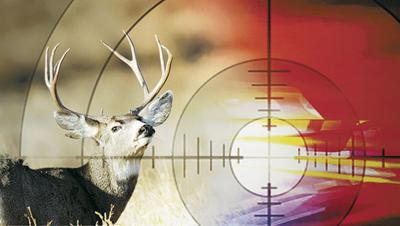 Deer In Bullet Line