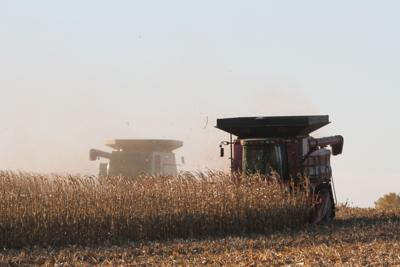 Harvest help puts ailing farmer at ease