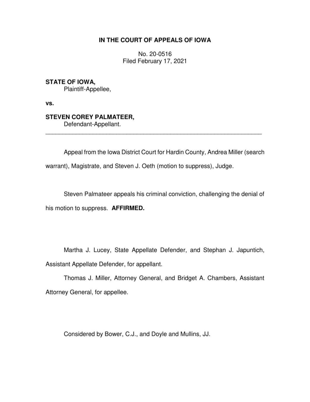 Court of Appeals Decision: Palmateer