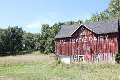 Palisade Property
