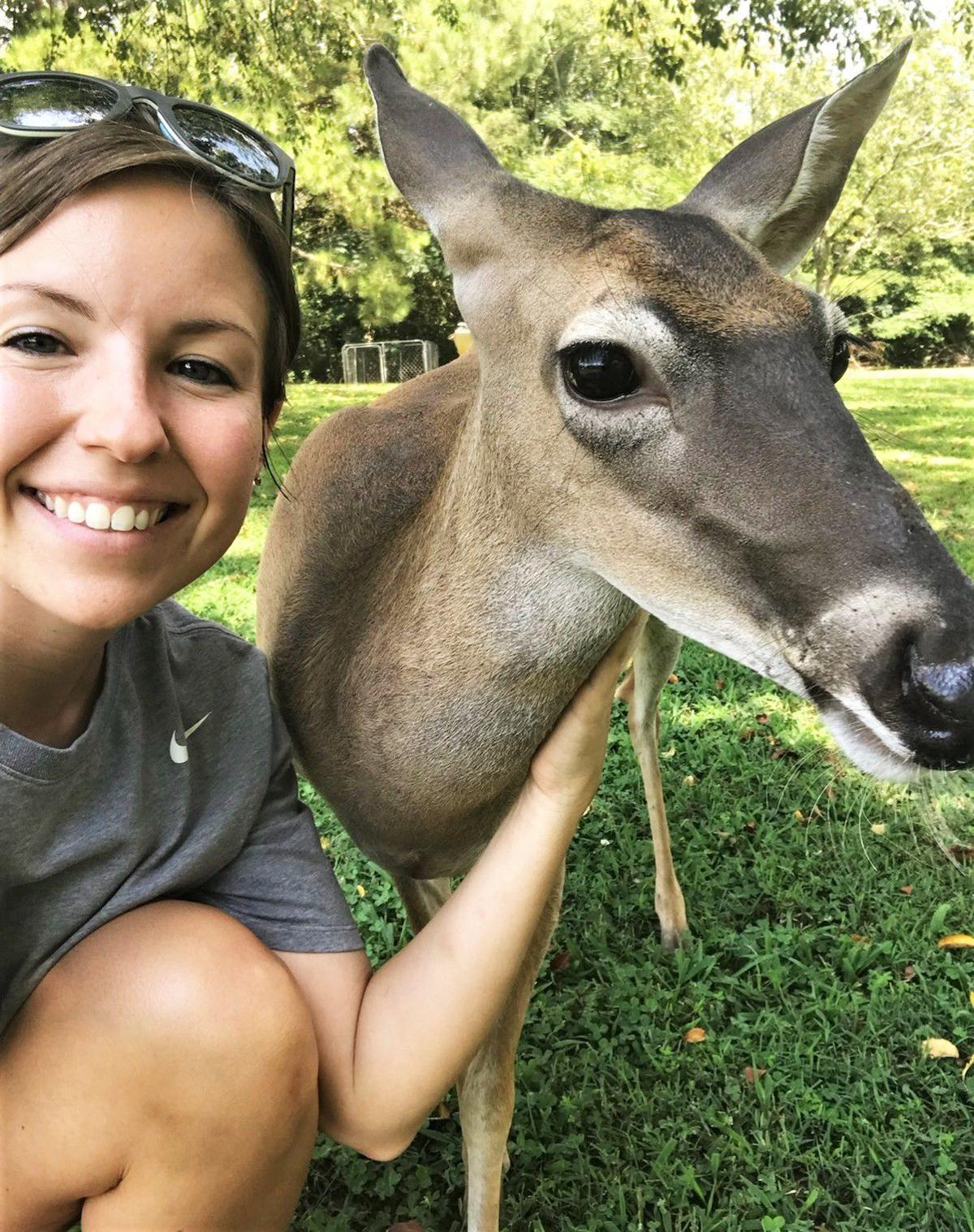 Dixie deer 02.jpg