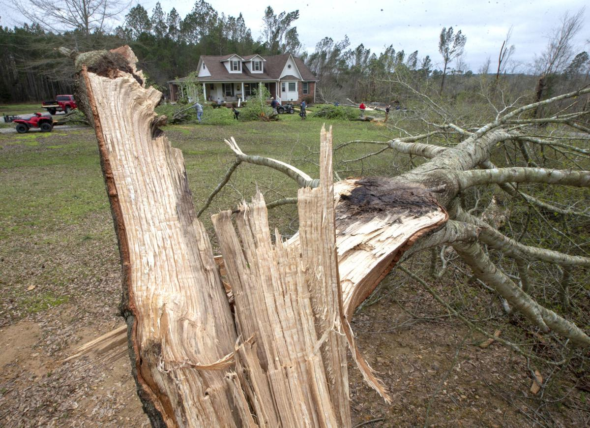 200325 Colbert County tornado damage 14