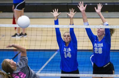 Wilson volleyball 2