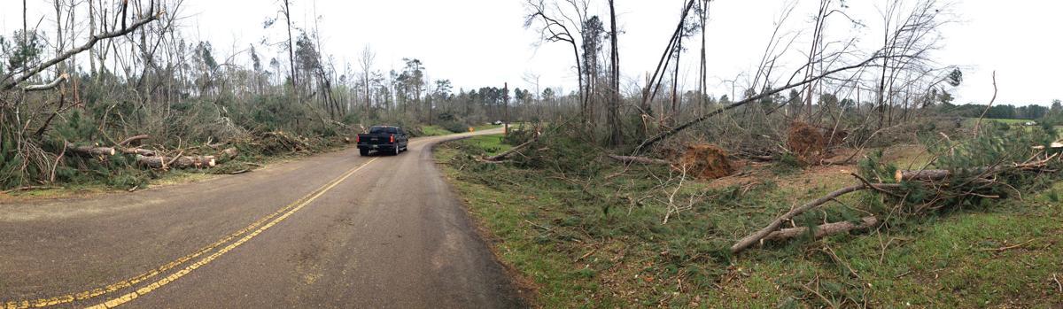 200325 Colbert County tornado damage 17