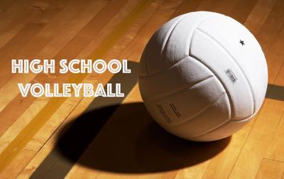 High school volleyball logo