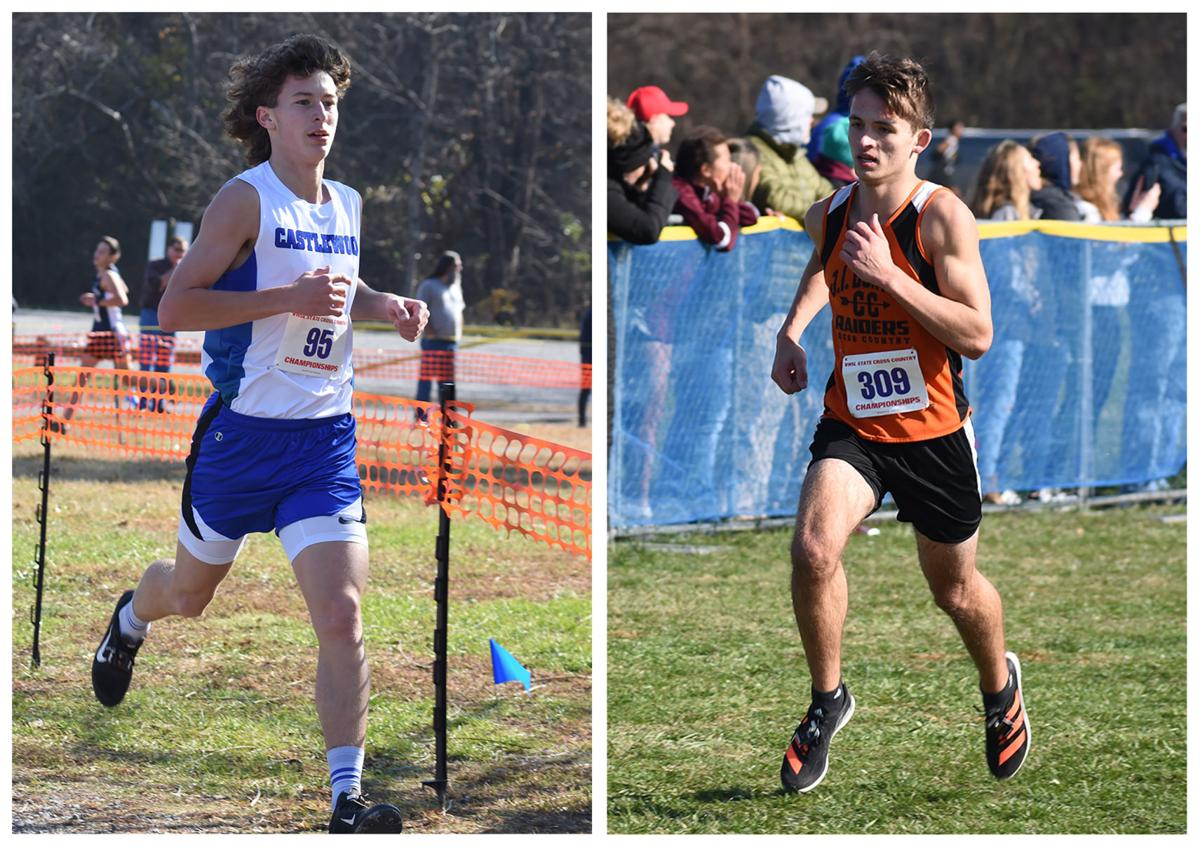 Castlewood's Hicks, Burton's Lindsey earn VHSL Class 1 all-state honors