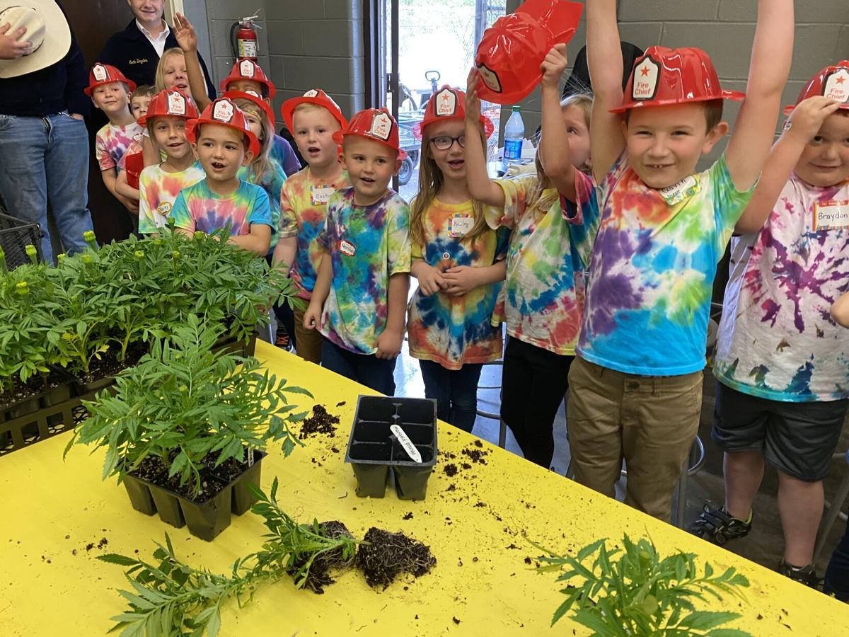 Kindergarten day at Sullivan East High 1