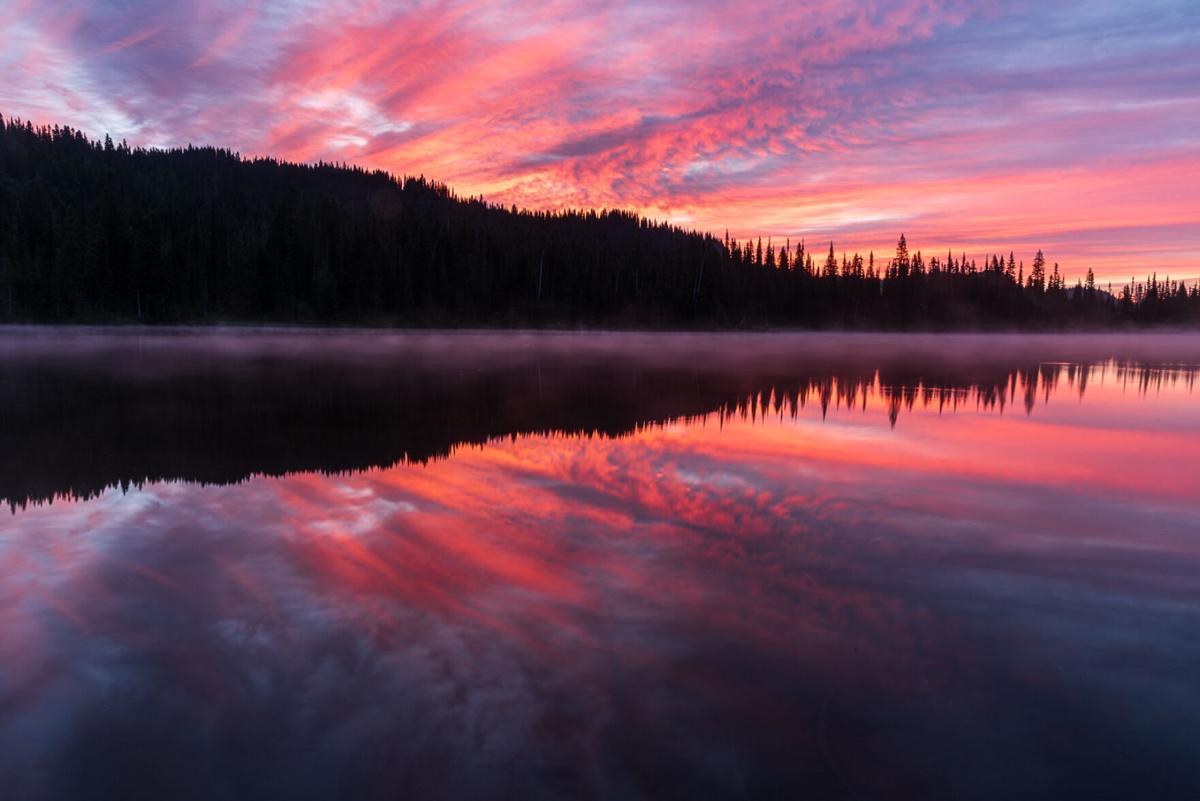 Mount Ranier National Park 3748