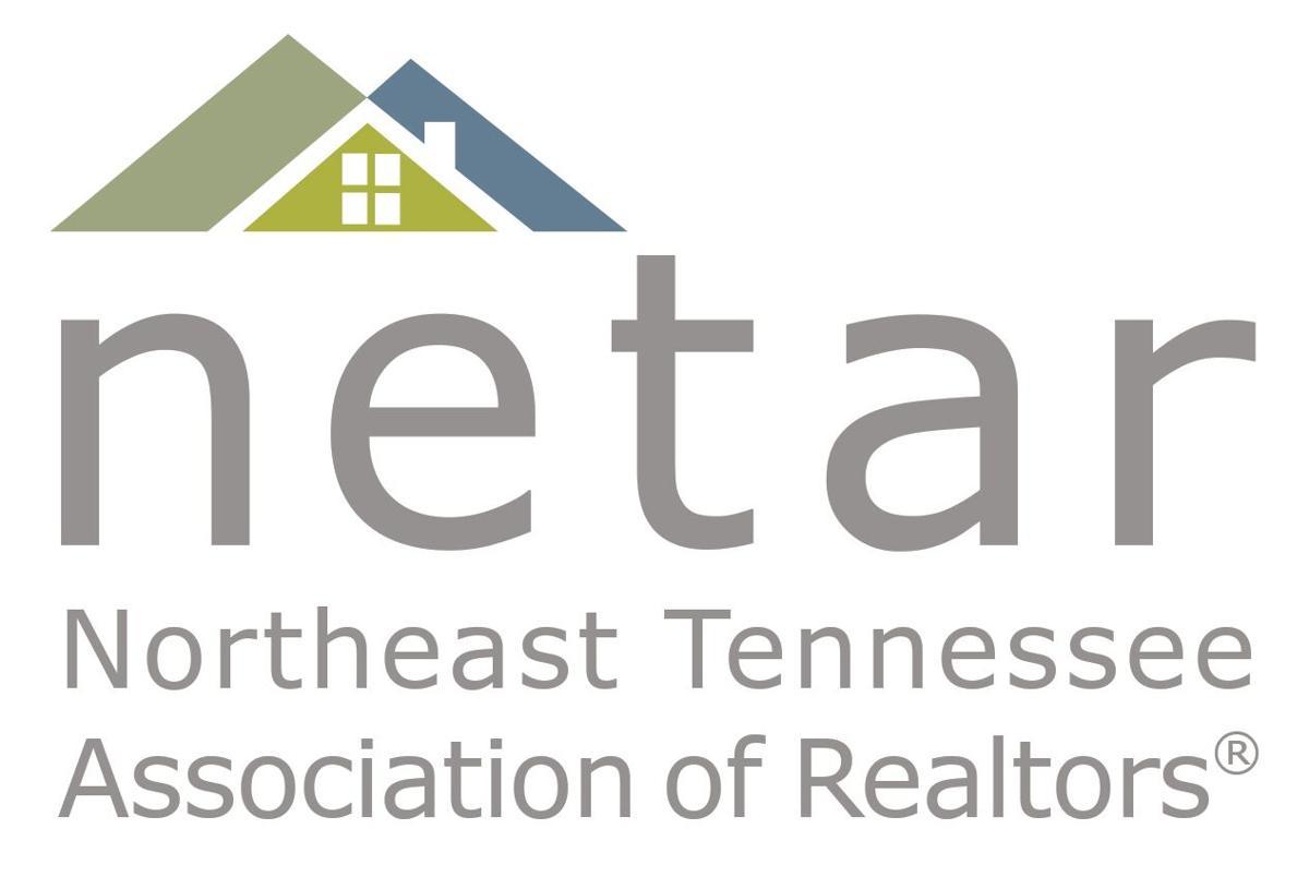 NETAR logo