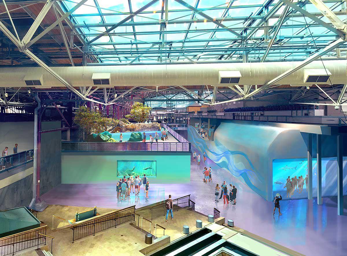 St. Louis Aquarium 2