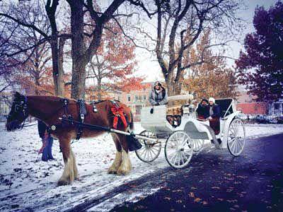 Lafayette Square carriage rides 2018