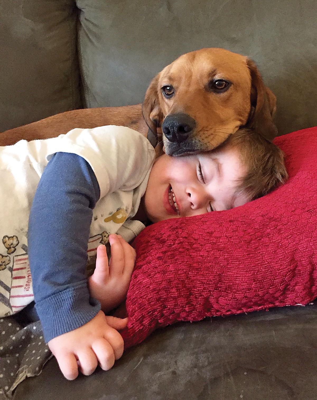 Laura Hettinga photo of Henry and Rocky