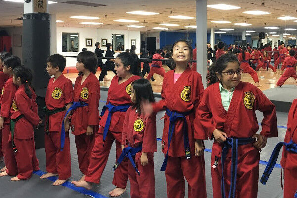 Northern Karate Schools Willowdale