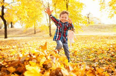 10 Must-Do Fall Activities For Families