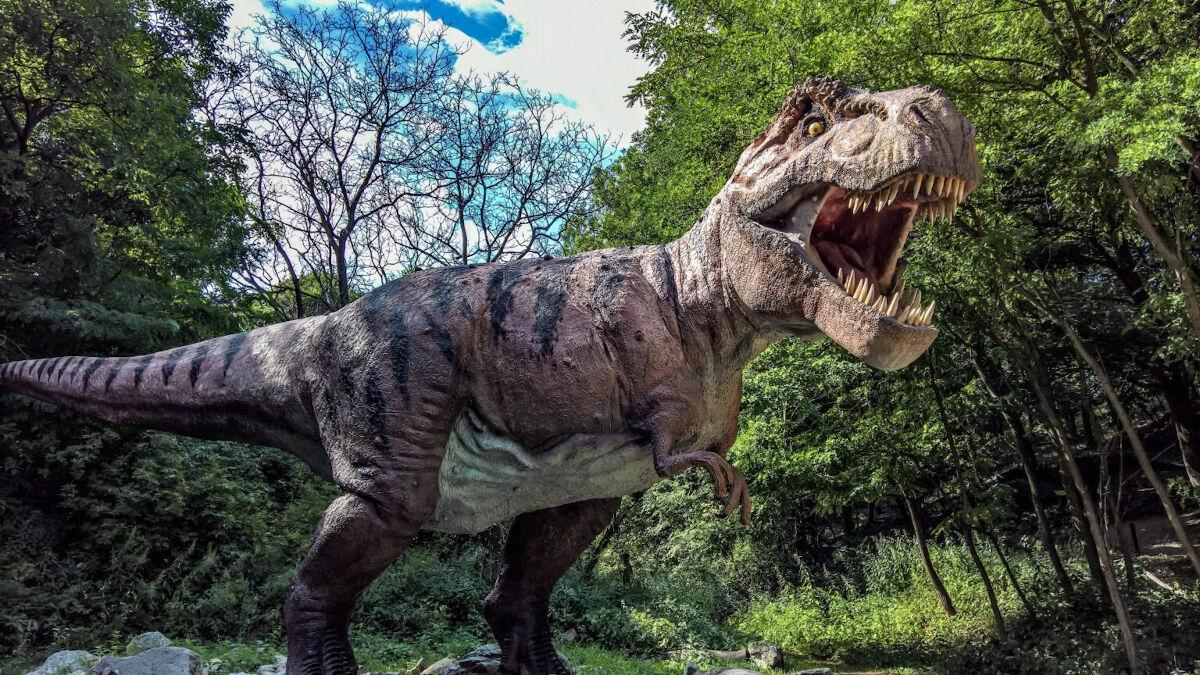 Weekend Events - Dino and Friends Drive-Thru