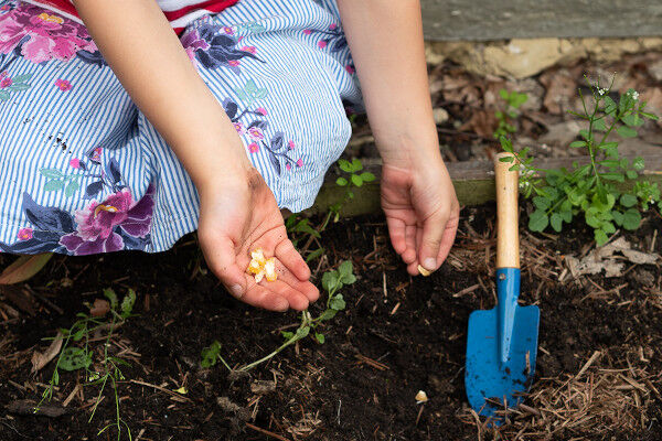 10 Fun and Cute Gardening Projects for Kids