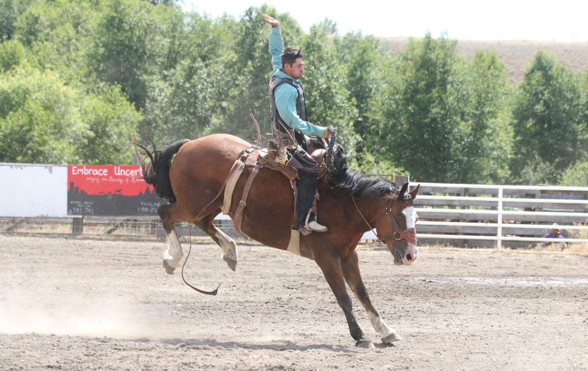 Fran Marchand (Colville Tribal member) competes in the saddle bronc on Saturday (July 13) at the Nespelem Celebration Rodeo. Marchand would go on to place first overall in the saddle bronc