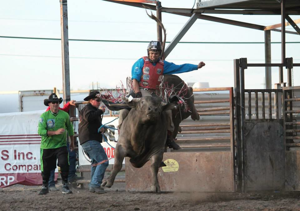 Shawn Best II (Colville tribal member) hangs on to a bull at Coulee City back in 2014