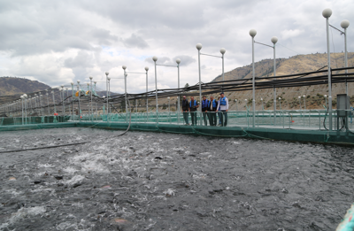 TERO officials and Pacific Seafood staff toured the company's net pens on Rufus Woods Reservoir in 2016.