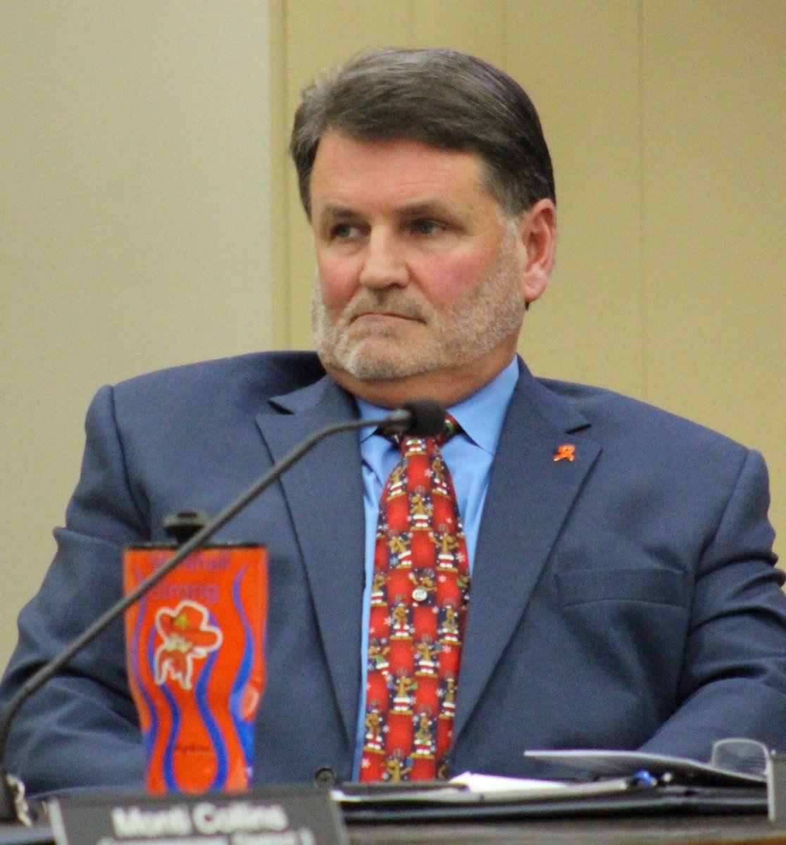 '2nd Amendment' ordinance progresses