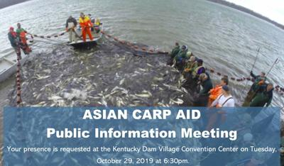 Local business pitching festival as weapon against Asian carp invasion image