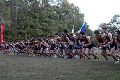 Running to state: Local teams and runners qualify for state championships