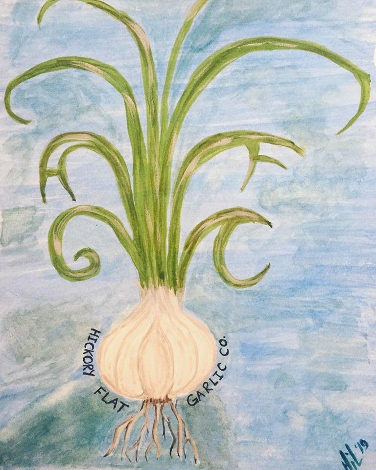 Hickory Flat Garlic Company Logo.jpg