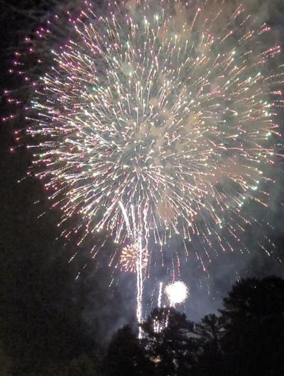 070321_CTN_FireworkPets