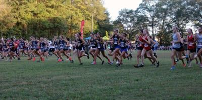 2019 Girls Cross Country All-County