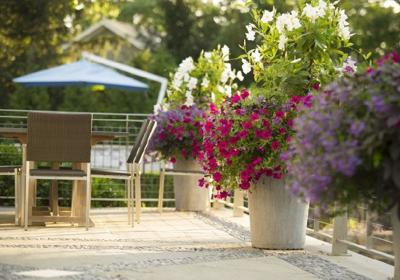 Making the most of your outdoor space