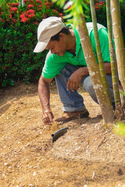 Learn To Landscape Workshop This Weekend