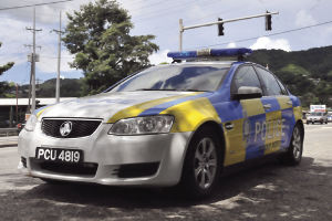 ...New-look police cars for visibility