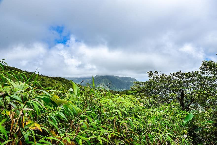 la-soufriere-volcano-table-rock-volcano-st-vincent-and-the-grenadines.jpg
