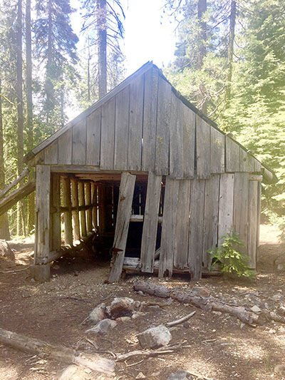 Fosters Cabin