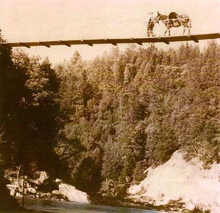 Hyampom Mule Bridge reopens on centennial