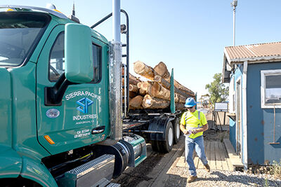 Timber operations at Shasta College