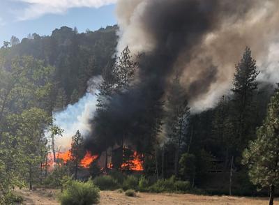 Bucktail Fire