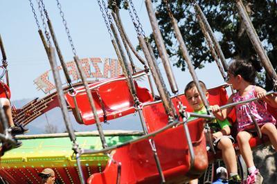 Trinity County Fair