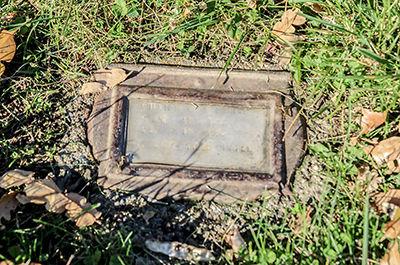 Hayfork grave project