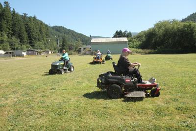 Ladybugs mow park2
