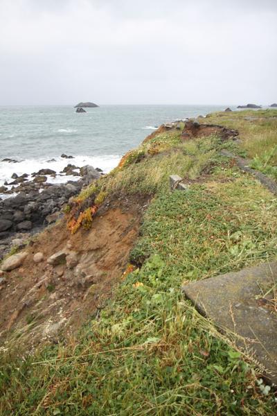 Pebble Beach Stabilization