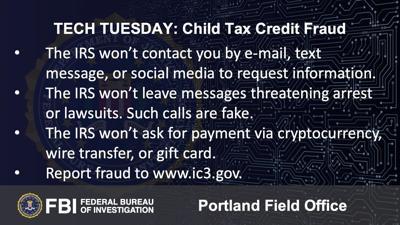 Building a Digital Defense Against IRS Child Tax Credit Fraud