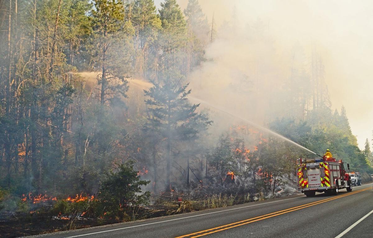 Redwood fire