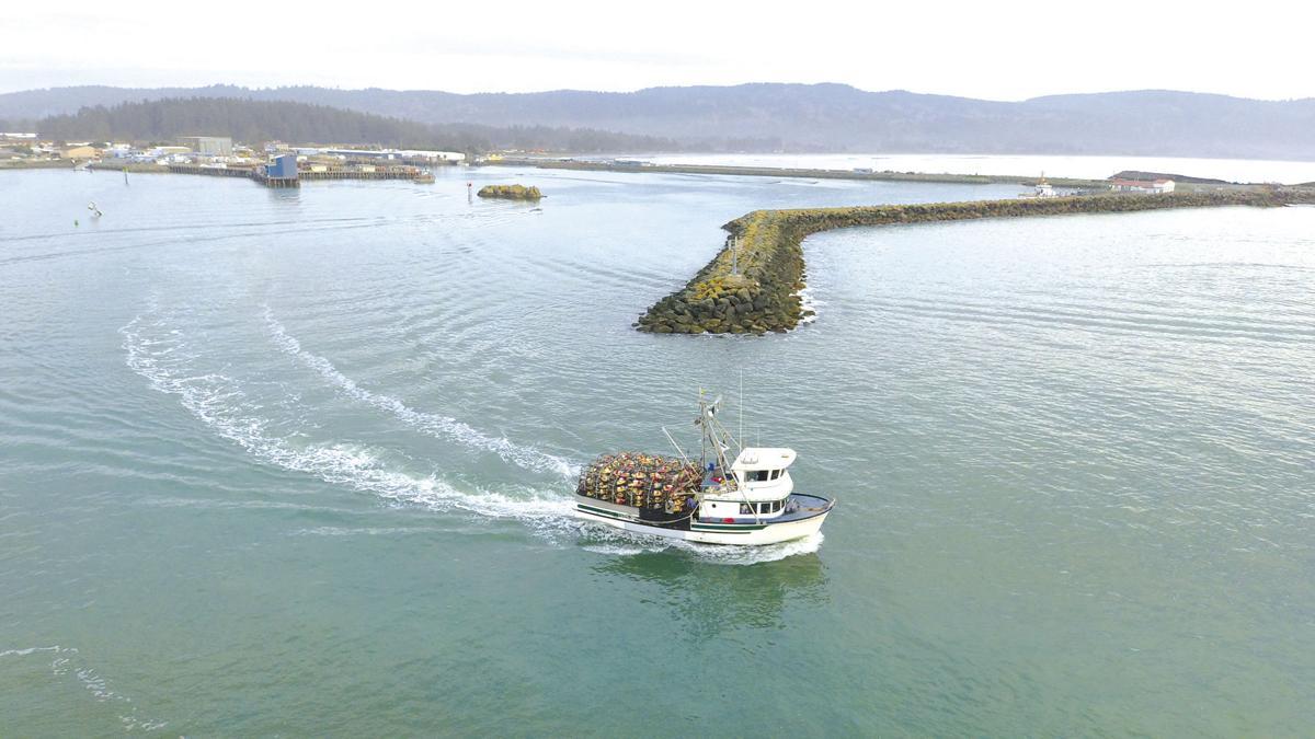 Dungeness crabbing season opens