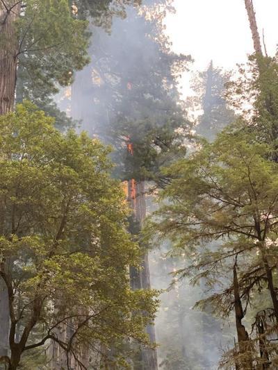 Howland Hill Fire
