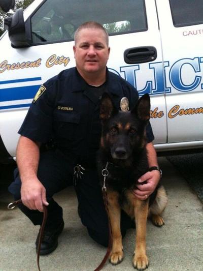 K9 Ares passes