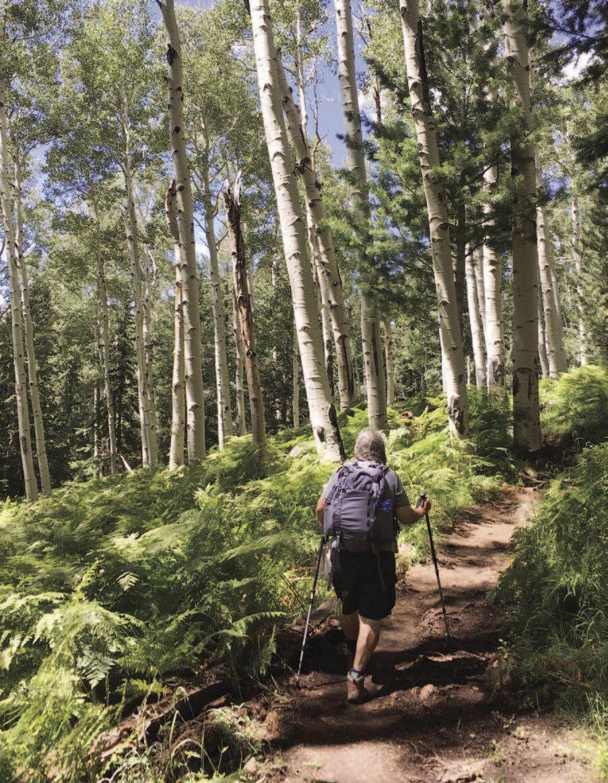 Flagstaff Hiker