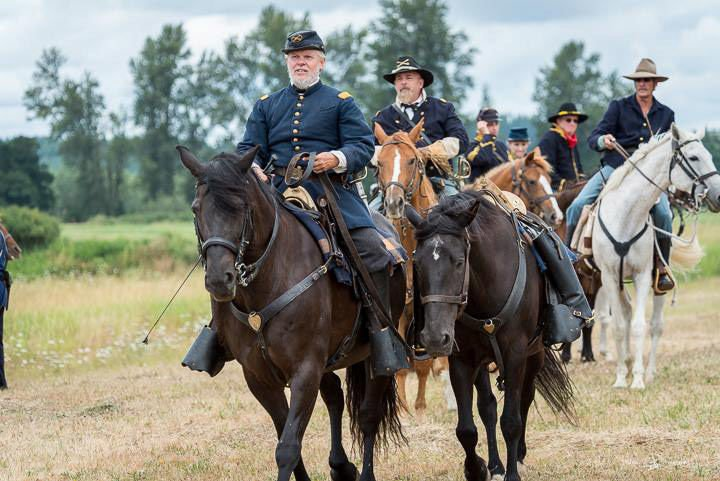 Ken Morris and the Canadian Horse – From the antique shop to the battlefield